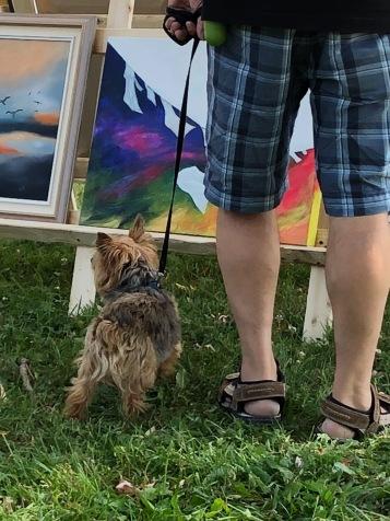 Festival Jessup's Falls 2018 - Art